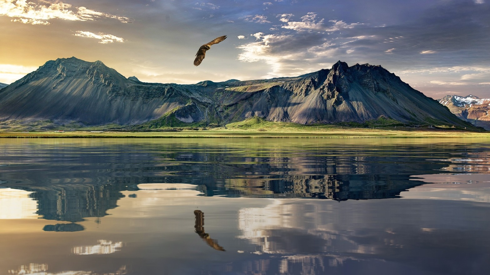 eagle flying over lake with mountains behind it