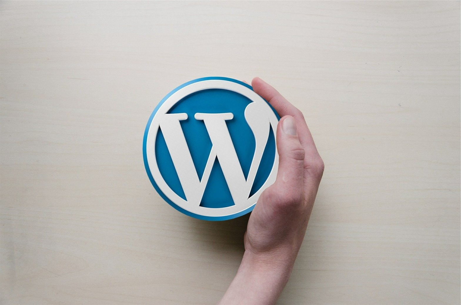 blue wordpress logo puck